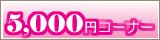 5000円コーナー